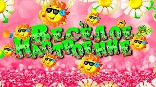 Прикольный юмор  Юмористическое видео Весёлое настроение