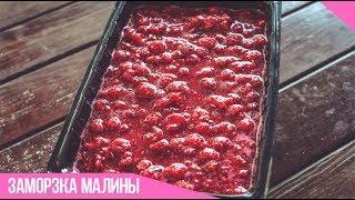 Заморозка малины на зиму (целые ягоды в малиновом пюре)